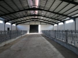 Adana küçükbaş hayvan ağıl ahır ciftlik yapan firmalar